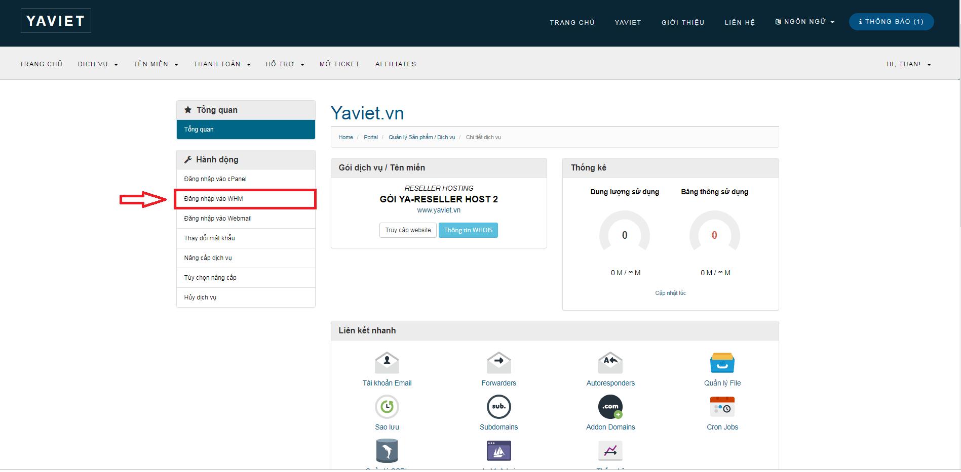 reseller hosting yaviet